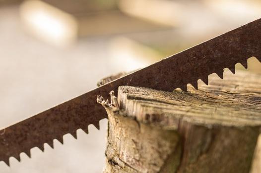 Free stock photo of wood, tool, saw