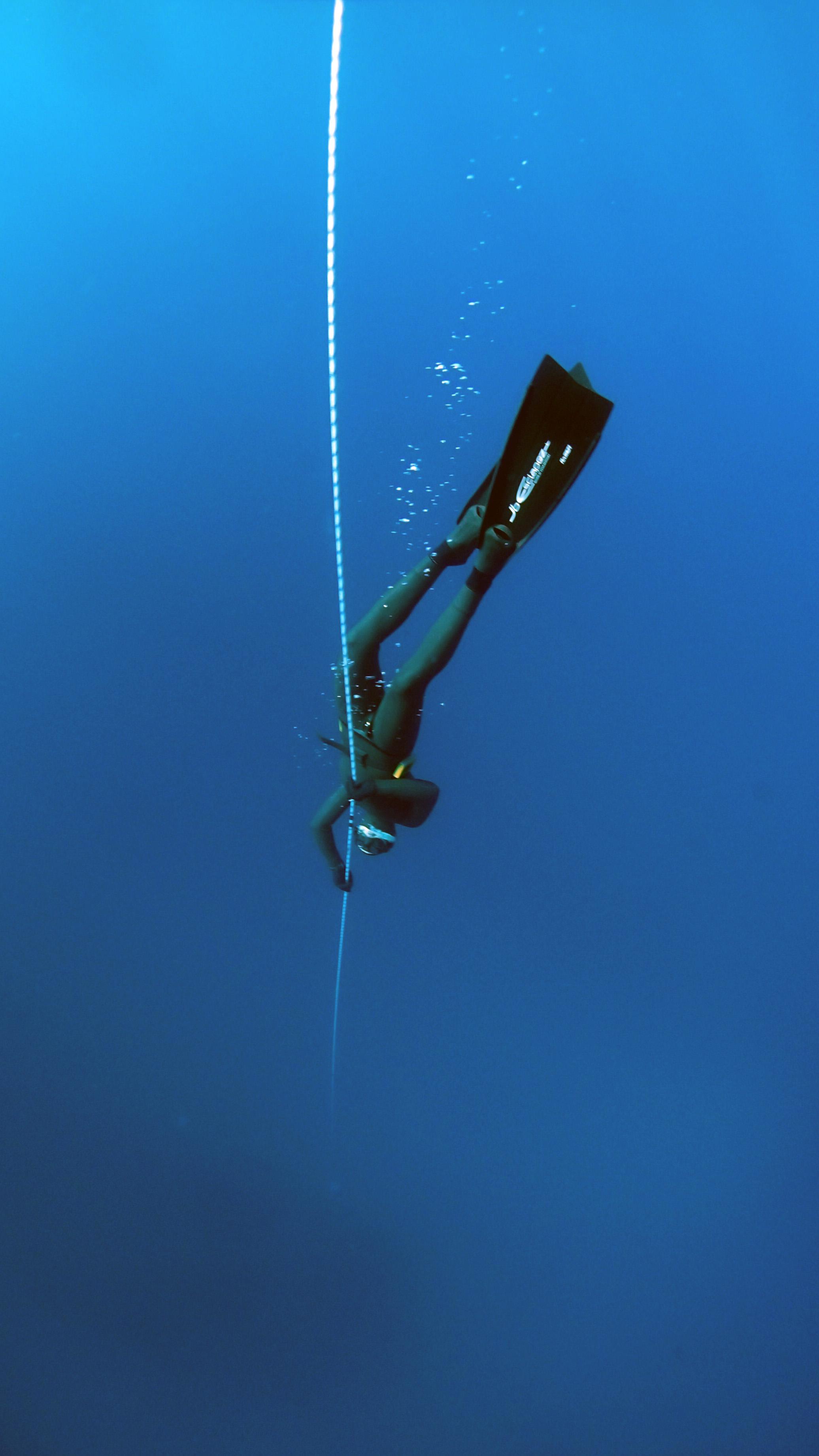 Free stock photo of blue deep diving deep ocean - Dive deep blue ...
