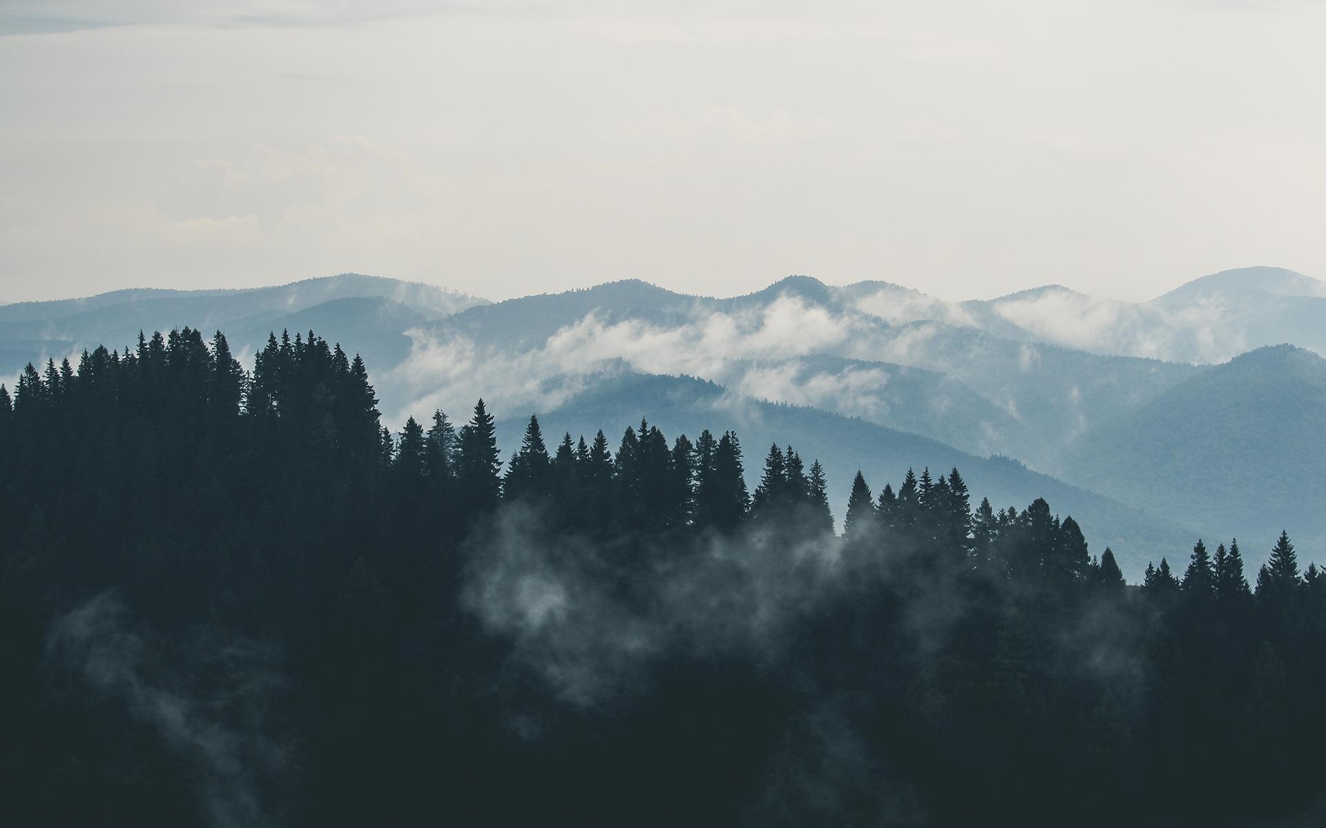mountain fog wallpaper Gallery
