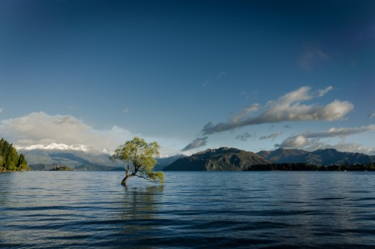 Flooded, Lake, Mountains, Nature