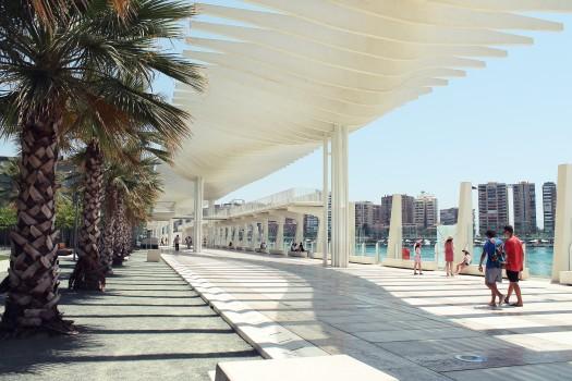 Architecture, Holidays, Hotel, Palms