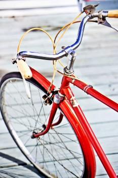 Bicycle, Bike