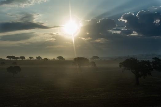 Dawn, Dust, Nature, Sun