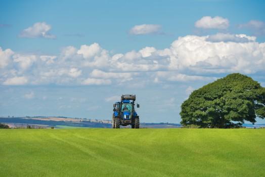 Agriculture, Farm, Field, Grass